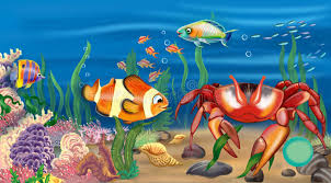 real underwater world. Delighful World Download Krab Stock Illustration Illustration Of Backgrounds  69702178 To Real Underwater World R