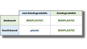 Biodegradable Vs Bioplastics Whats The Difference Mini