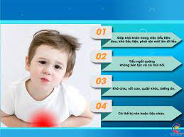 Phòng tránh viêm đường tiết niệu ở trẻ em - Những điều cha mẹ cần lưu ý