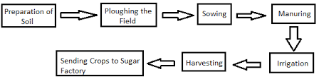 Ncert Class 8 Crop Production And Management Freeguru Helpline