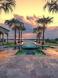 palm trees landscaping this infinity pool is lined with fantastic palm trees these trees introduce a