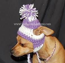 Crochet Dog Hat Pattern Gorgeous Ravelry Small Dog EarFlap Dog Hat With Stripes Pattern By Sara Sach