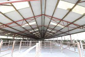 large agricultural steel farm sheds co