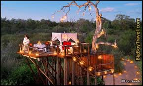 Treehouse Hotel In Australia Silky Oaks Lodge  Tree House Treehouse Accommodation