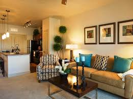 Decorating Living Room Apartment Best Apartment Living Rooms