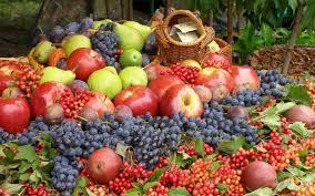 Wallpaper : cranberry, grapes, apples, pears, plums, berries, fruit, harvest  1680x1050 - goodfon - 1036903 - HD Wallpapers - WallHere