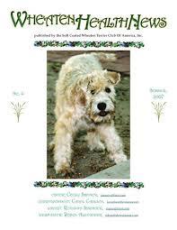 soft coated wheaten terrier club