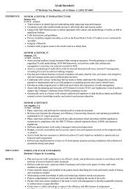 It Resume Examples Senior Auditor IT Resume Samples Velvet Jobs 28