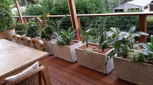 Small Picture Balcony Garden The Lovely Plants