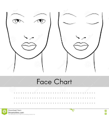 makeup artist blank template vector ilration vector woman face chart portrait female face with open and clos royalty free stock photography