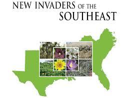 Invasive Org