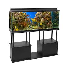 furniture fish tanks. Snazzy Awesome Black 55 Gallon Fish Tank For Sale Mesmerizing Alluring Home Furniture Tanks