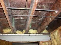 How To Get Rid Of Black Mold In Basement  Tips To Remove From WallsMold In Basement