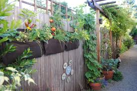 vertical gardening on a fence