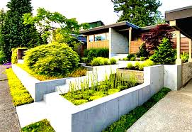 Lawn & Garden:Endearing Front Yard Landscape Idea From Modern House With  Ferns And Concrete