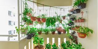 edible garden here s how to grow herbs