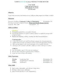 Objective In Resume Samples Sample Professional Resume