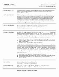 Profile Statement For Resume Custom Resume Profile Statement For Compliance Sample Best Actuary Resume