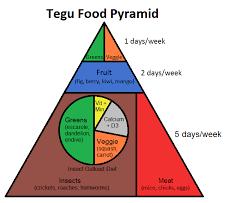 Tegu Food Pyramid Complete Critter