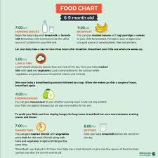 Breakfast Lunch And Dinner Chart My Baby Is Going To Complete 6months On 12 Pls Provide The