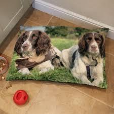 um dog bed cushion 37x28