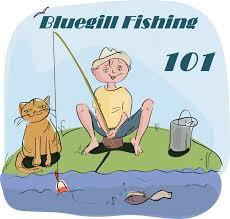Image result for bluegill fishing pics