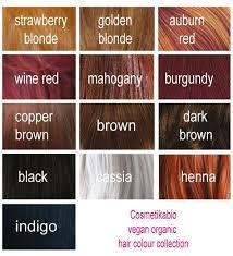 Biooocz Cosmetikabio Barva Na Vlasy Henna 100 G