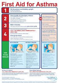 Category Charts National Asthma Council Australia