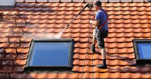 How to Find an Affordable Roof Cleaning Company - Empire House SD