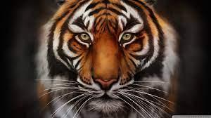 Anime Tiger Wallpaper 4K