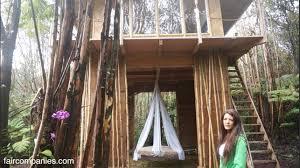 hawaii tiny house. Hawaii Tiny House N