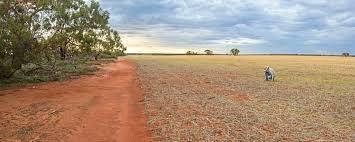 Bilderesultat for land area western australia
