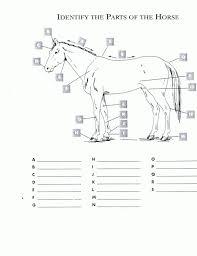 07d794cf565b770fca2d0d642442586f red oak riders 4h horse pinterest red oak, red and worksheets on symptom management worksheets