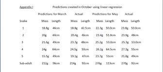 Bearded Dragon Length Age Chart Great Dragon 2017