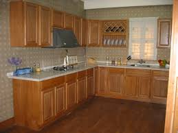 Modern Kitchen Cabinet : Fabulous Frameless Kitchen Cabinets ...