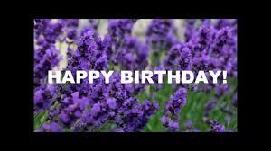 Happy Birthday Purple Lavender Ecard Youtube