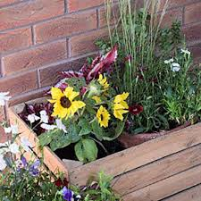 rustic wooden garden planter large size