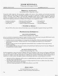Recruiter Resume Template Beauteous Recruiting Resume Professional Resume Elegant Recruiter Resume