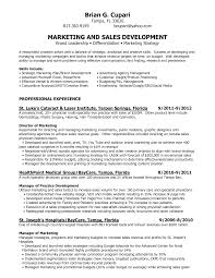 Retail Marketing Manager Resume Bb Marketing Manager Resume Picture