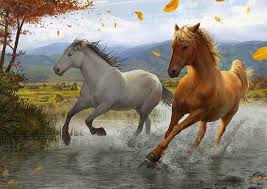 horses running in the wind. Delighful Running 1280 X 905 And Horses Running In The Wind S