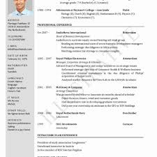 Resume Formats For Word Awesome Resume Templates Word 2013