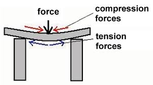 compression force. the top surface is essentially getting compressed into a slightly tighter space, but bottom stretched out compression force o