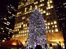 Daley Center Tree Lighting Christmas Tree Lighting From Daley Center Plaza World Of