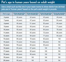 Human Weight Chart According To Age A Question That Opens The Door To Better Patient Care