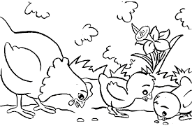 Small Picture cartoon chicken coloring pages making an easter candy box white