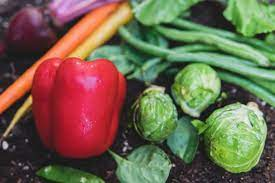 10 vegetables to grow in your home garden