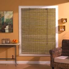 blinds : Mini Blinds Window Treatments Outstanding Bella View ...