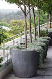 Pots and plants opposite entrance