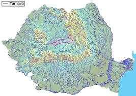 Târnava River