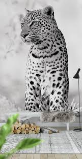 Leopard Wallpaper For Bedrooms 17 Best Ideas About Leopard Wall On Pinterest Leopard Wallpaper